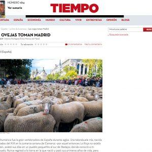 MarcosdelMazo_TIEMPO01